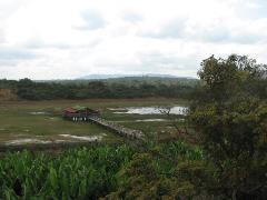 mandazi-img2439