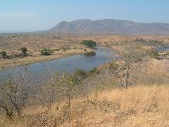 safari-dscf1571