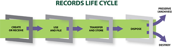 new_records_cycle