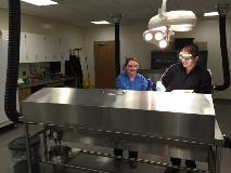 Cadaver Lab
