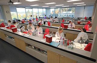 CLS lab