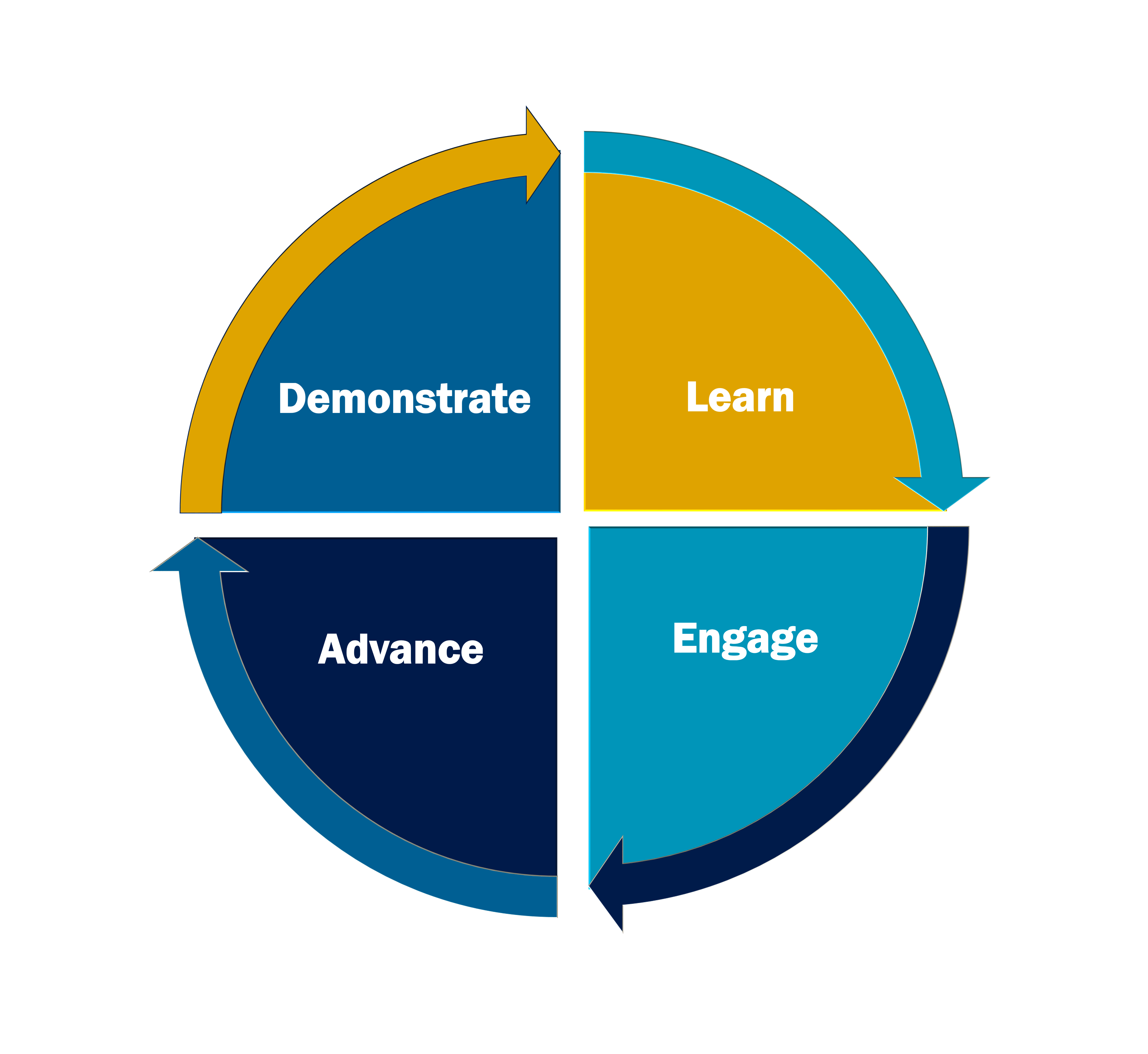 Leadership Academy 4 level cycle flat