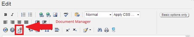 Document Manger Editor