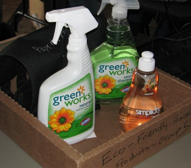 Examples of Eco-Friendly Products